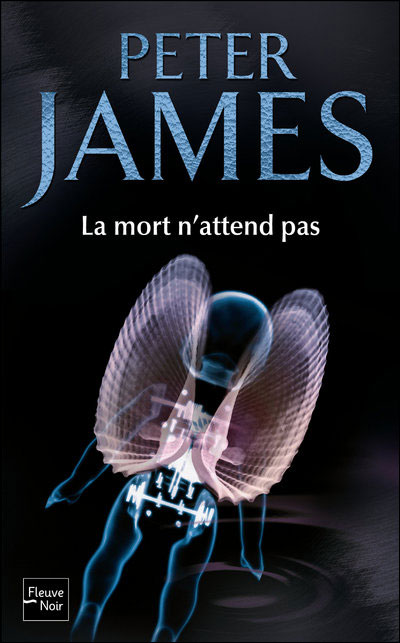 http://book-emissaire.cowblog.fr/images/9782265088764.jpg